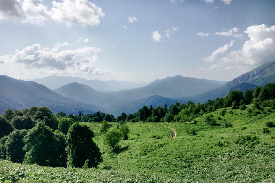 Альпийские луга над турбазой Большой Чуб