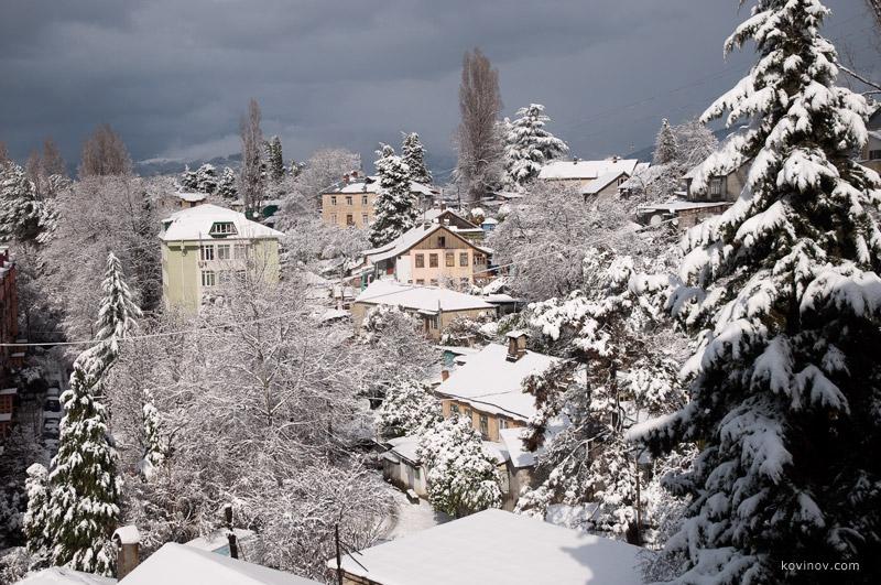 фото зимой сочи